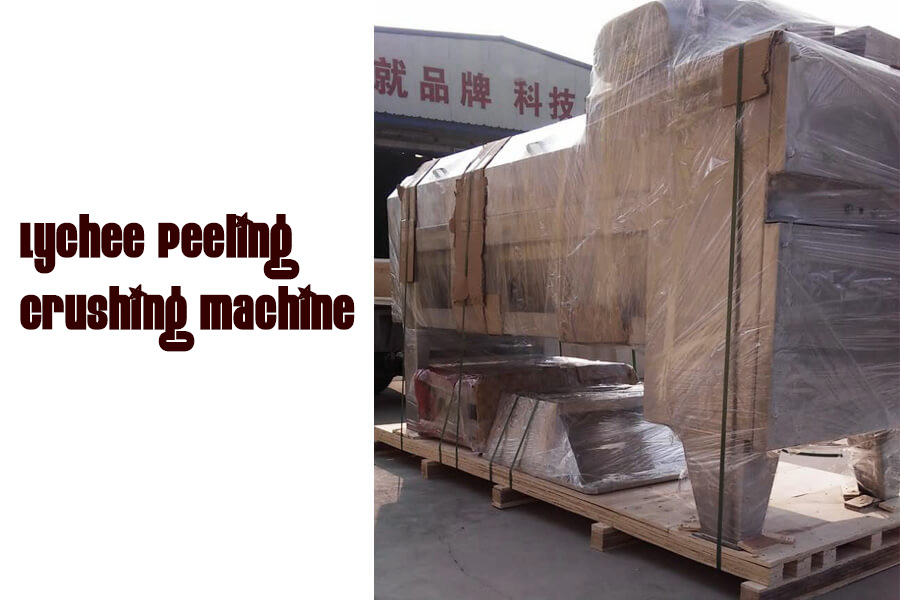 Best Lychee Peeling Crushing Pulp Processing Machinery 001