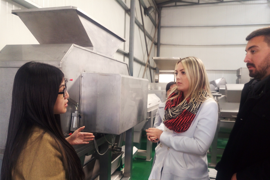 Brazil customers visit our factory for lychee pulp production line