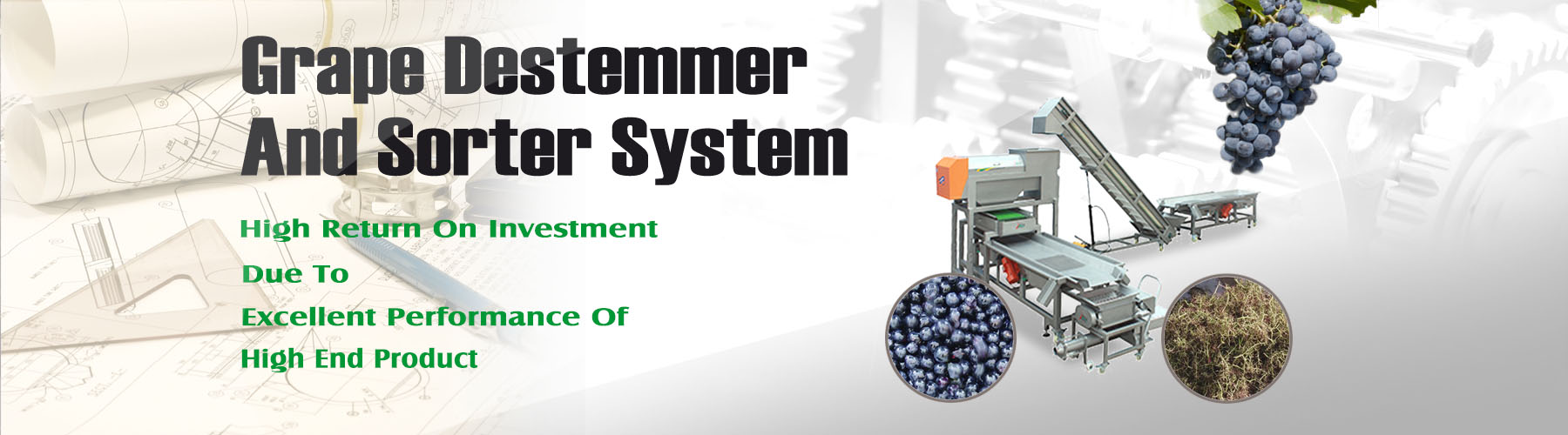Grape Destemmer And Sorter System--001