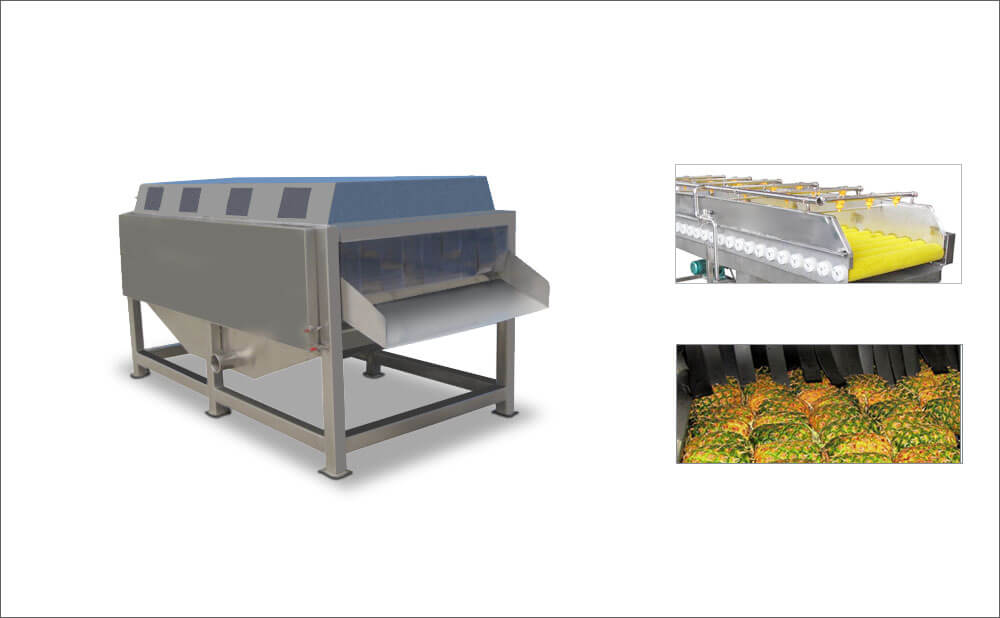vegetable-fruit-spraying-and-washing-cleaning-machine-for-industrial-purpose1