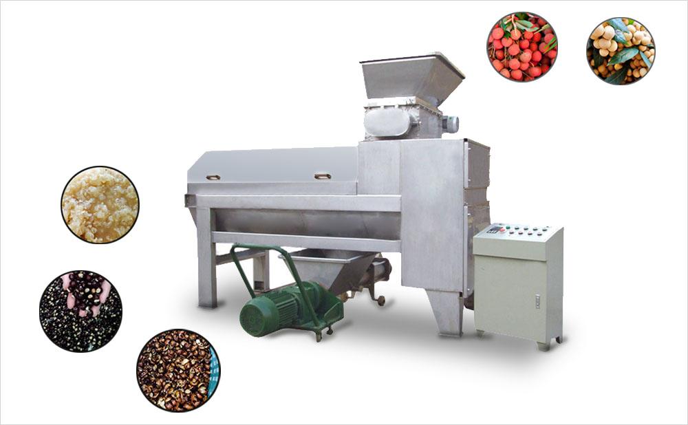 lychee-litchi-lichee-longan-peeling-and-pitting-machine-001